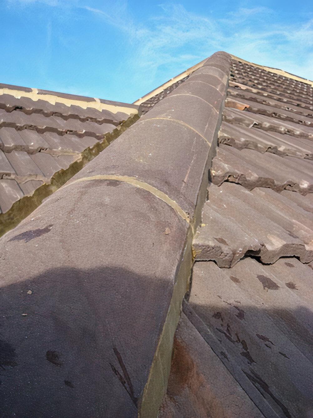 ridge-tile-repointing-3